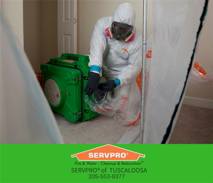 Personal Protection In Mold Remediation