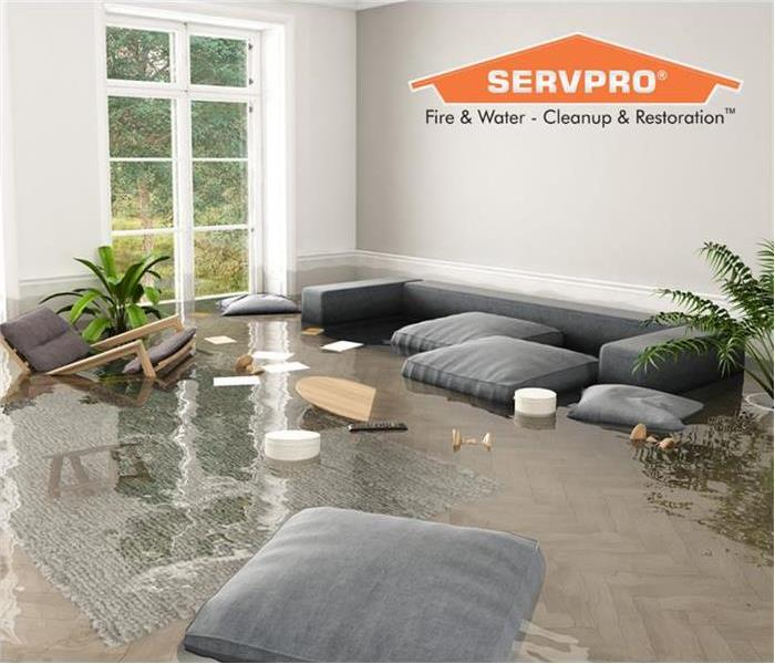 The flooded living room area can be fixed with the professionals at SERVPRO of Tuscaloosa!